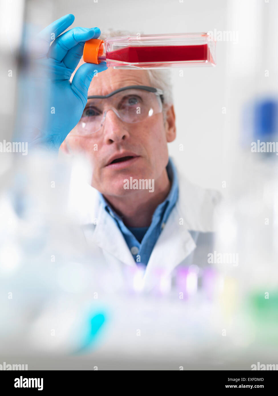 Close up of cell biologist holding a flask containing stem cells - Stock Image