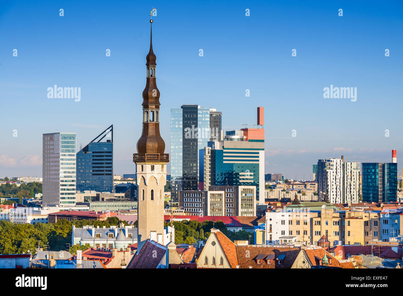 Tallinn, Estonia skyline with modern and historic buildings. - Stock Image