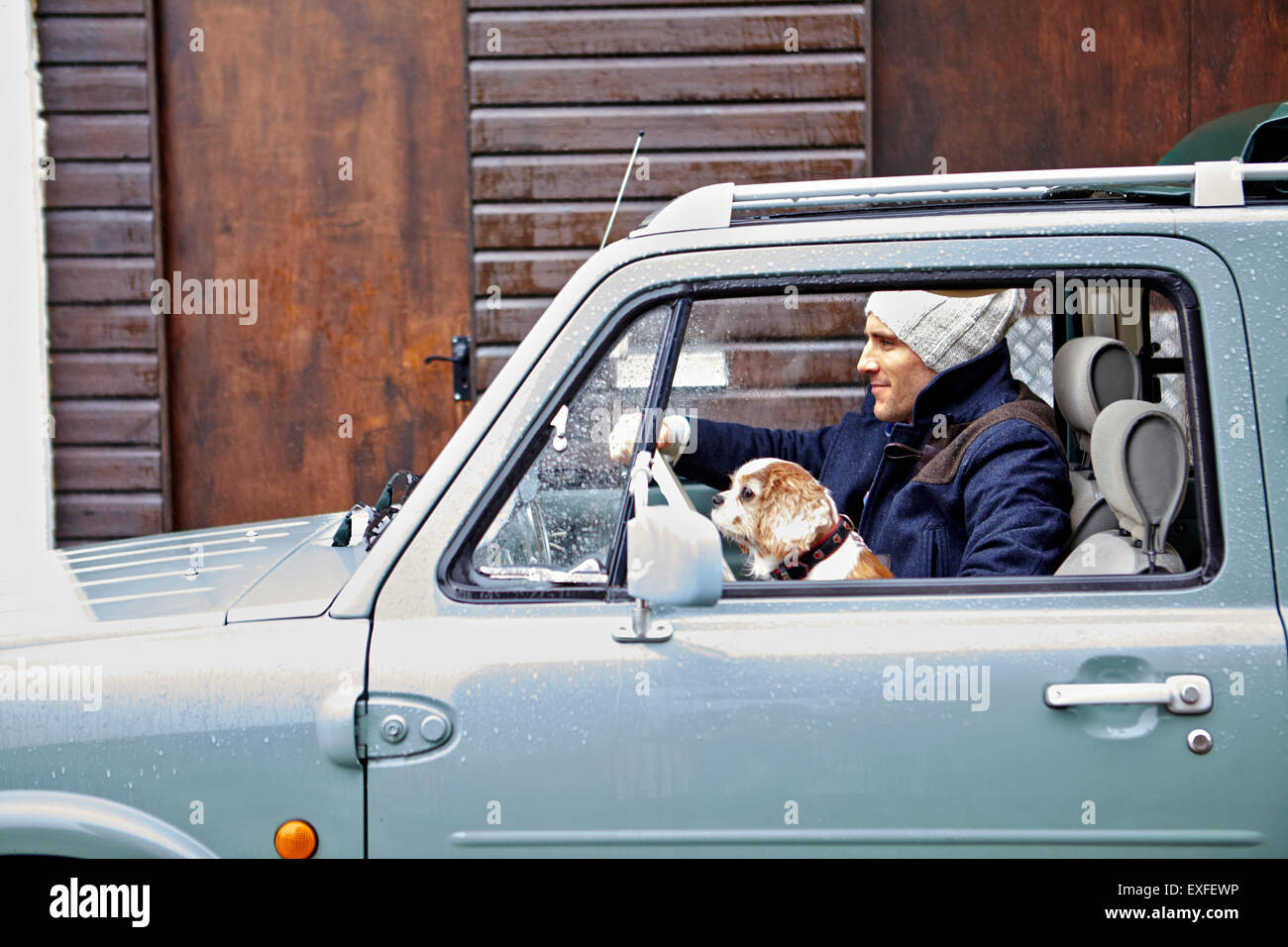 Mid adult man with dog driving van - Stock Image