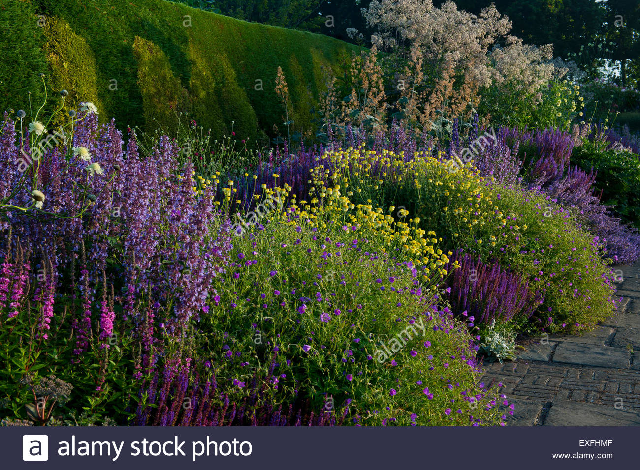 herbaceous border ' - Stock Image