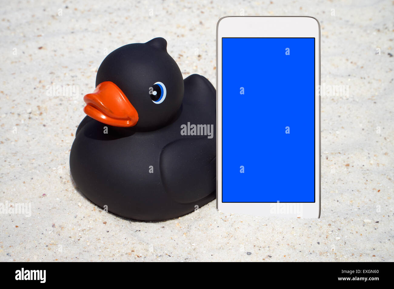 Black rubber duck and a white Smartphone with empty screen display on the beach Stock Photo