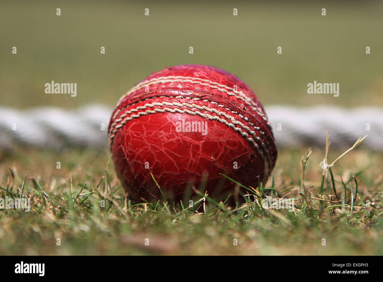 Cricket - Kent Cricket League Division IV 1st XI - Faversham Cricket Club v Cowdrey Cricket Club - Stock Image