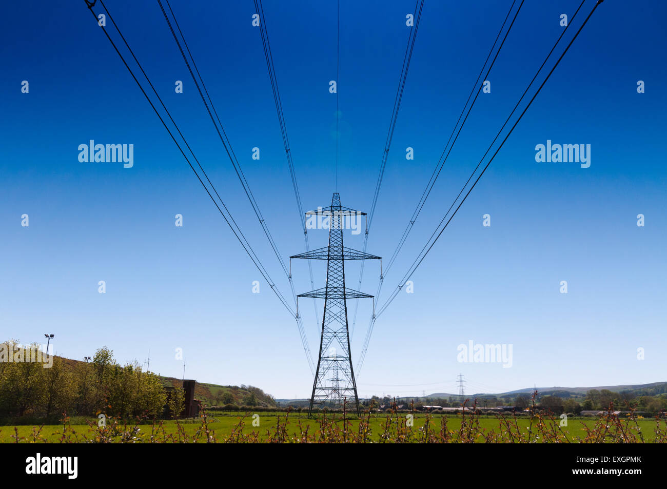 Power lines part of the national grid - Stock Image