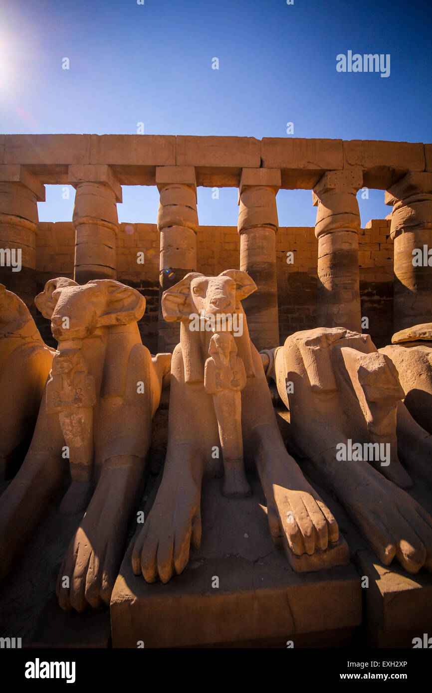 Temple of Karnak, row of ram headed sphinxes, Luxor, Egypt - Stock Image