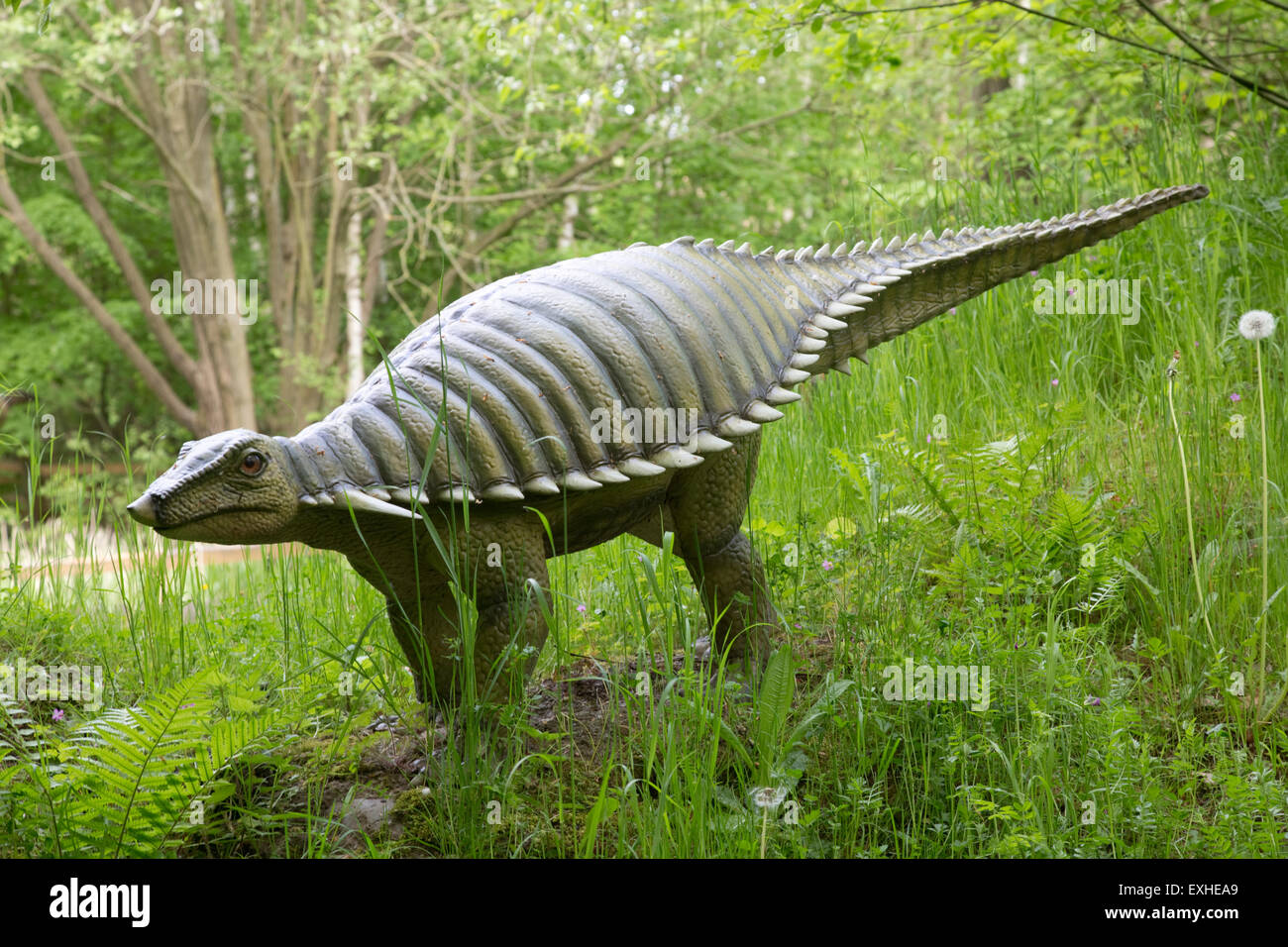 Typothorax extinct herbivorous aetosaur from late Triassic Dinosaurier Park Germany - Stock Image