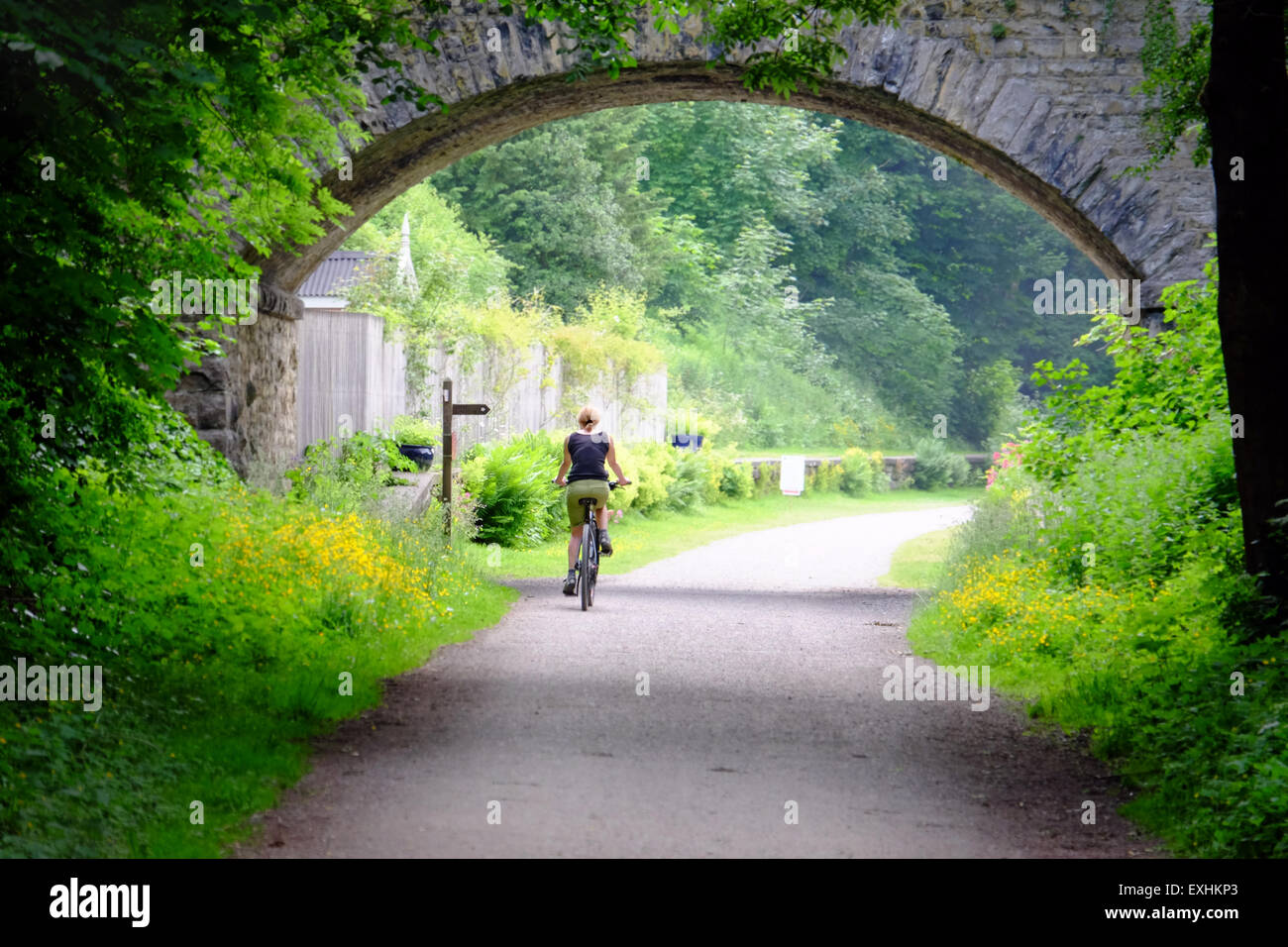 Female cyclist at Hassop on the Monsal Trail cycling route between Buxton and Bakewell in the Peak District, UK - Stock Image