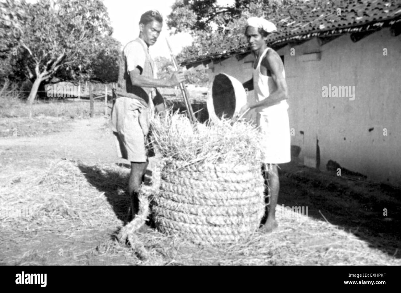Storing rice, India, 1956 1 - Stock Image