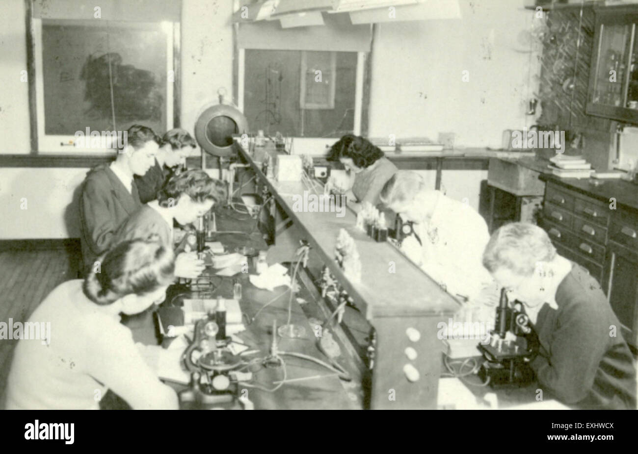 Bacteriology Lab, Goshen College - Stock Image