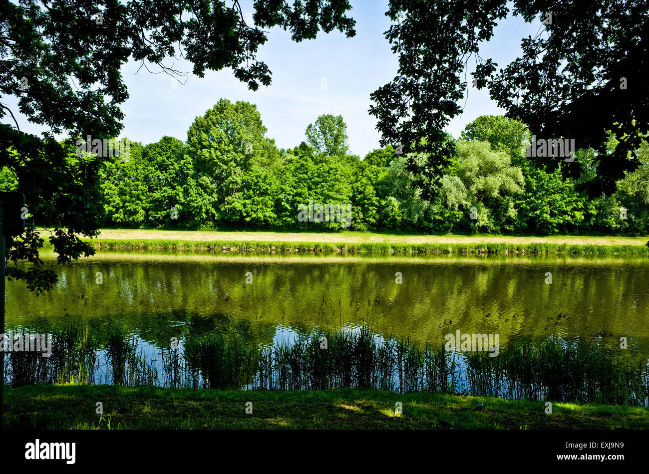 summer river and riverbank with green trees and grass - Stock Image