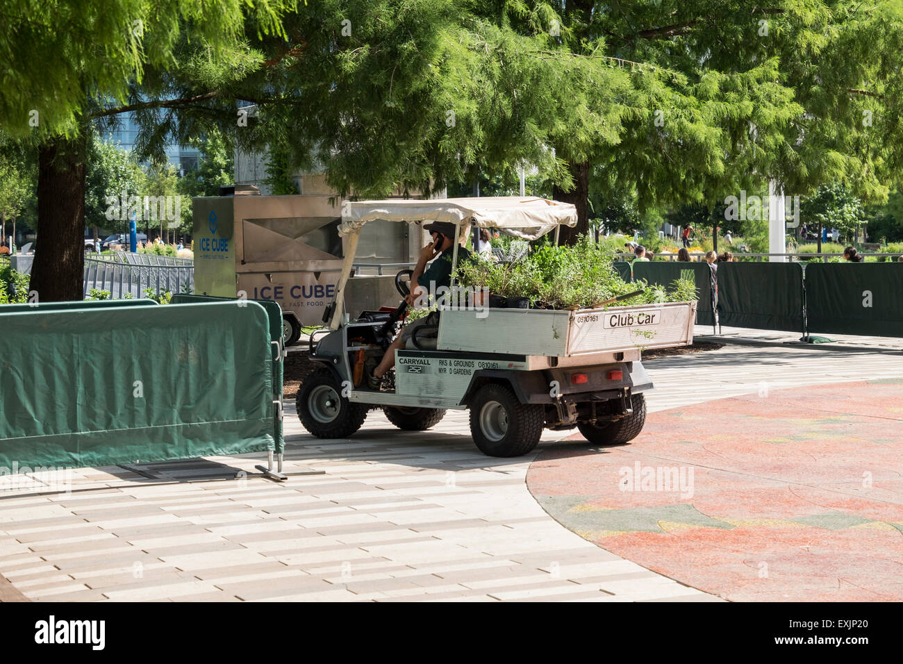A man drives a small truck called a Club Car filled with shrubbery for planting in the Myriad Botanical Gardens. - Stock Image