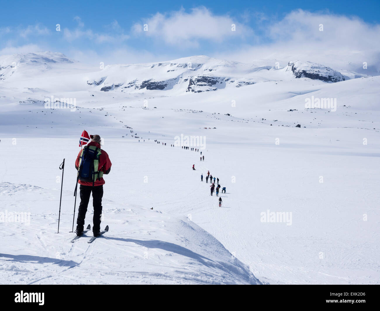National day 17th May, Norwegians walk on ski , carrying norwegian flags, walk from Finse, highest railway station - Stock Image
