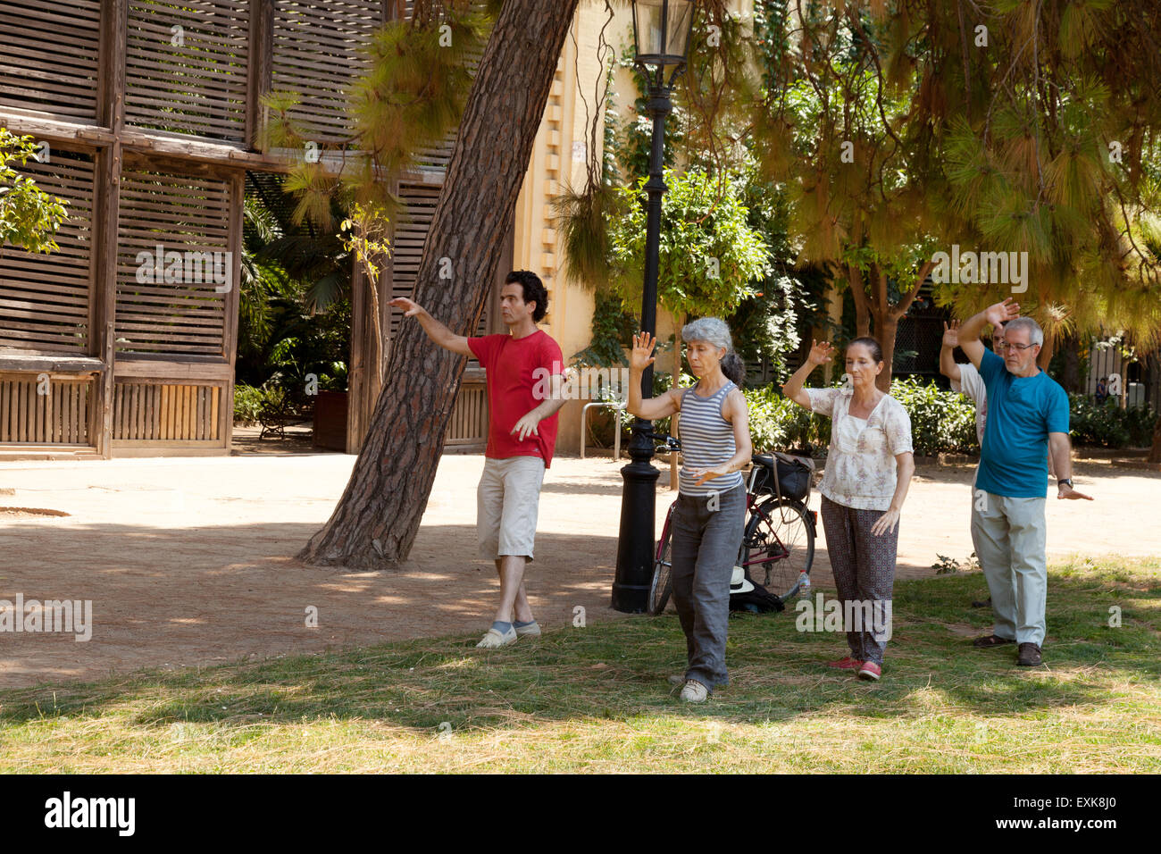 Local older people doing a Tai Chi class in a group, Parc de la Ciutadella ( Ciutadella Park ), Barcelona, Spain - Stock Image