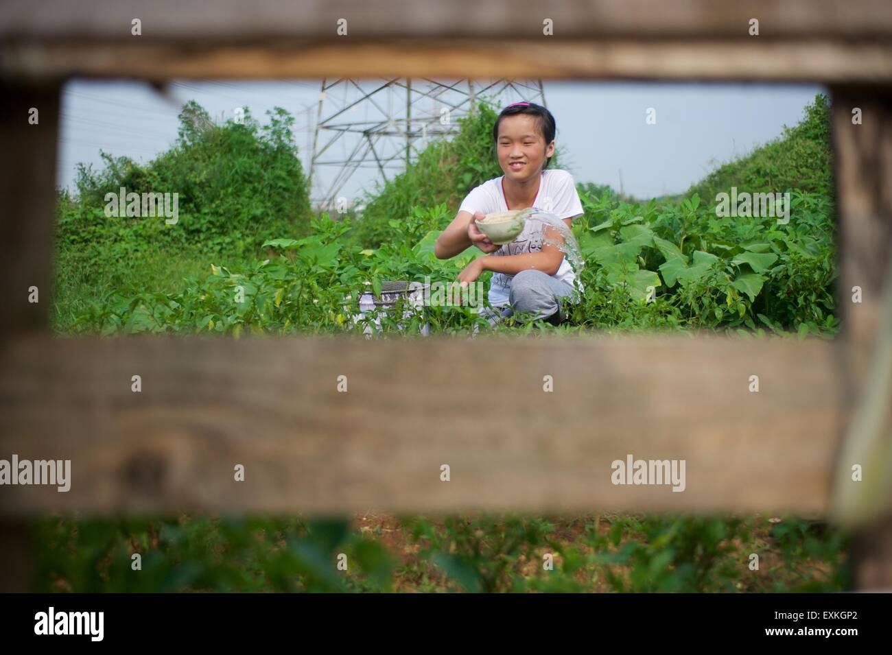 Nanchang, Nanchang City of east China's Jiangxi Province. 14th July, 2015. Li Wenyu waters vegetable at home - Stock Image
