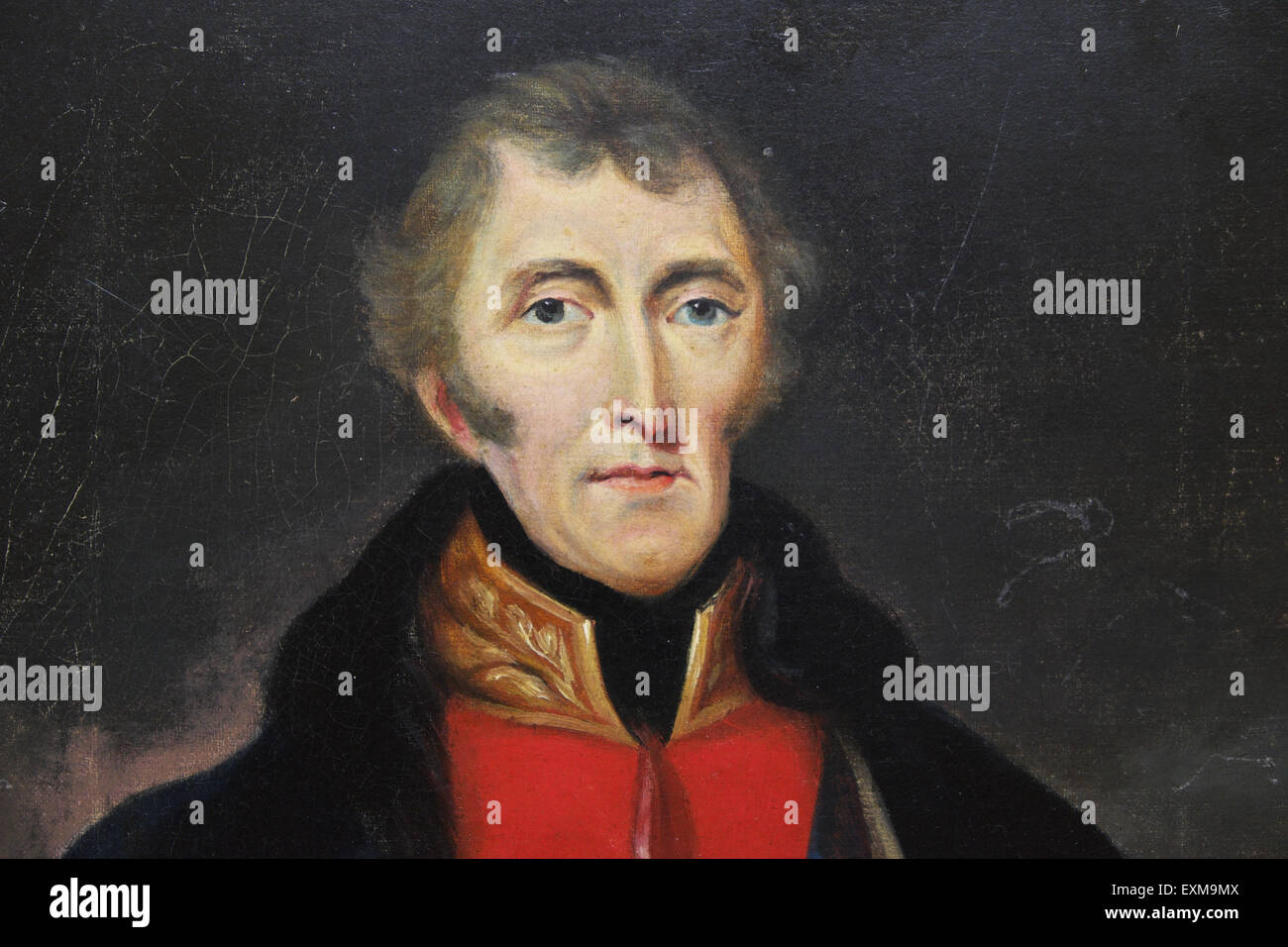 The Duke of Wellington portrait painting - Stock Image