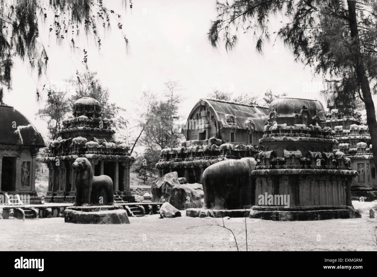Old picture post card ; Mahabalipuram ; Tamil Nadu ; India - Stock Image