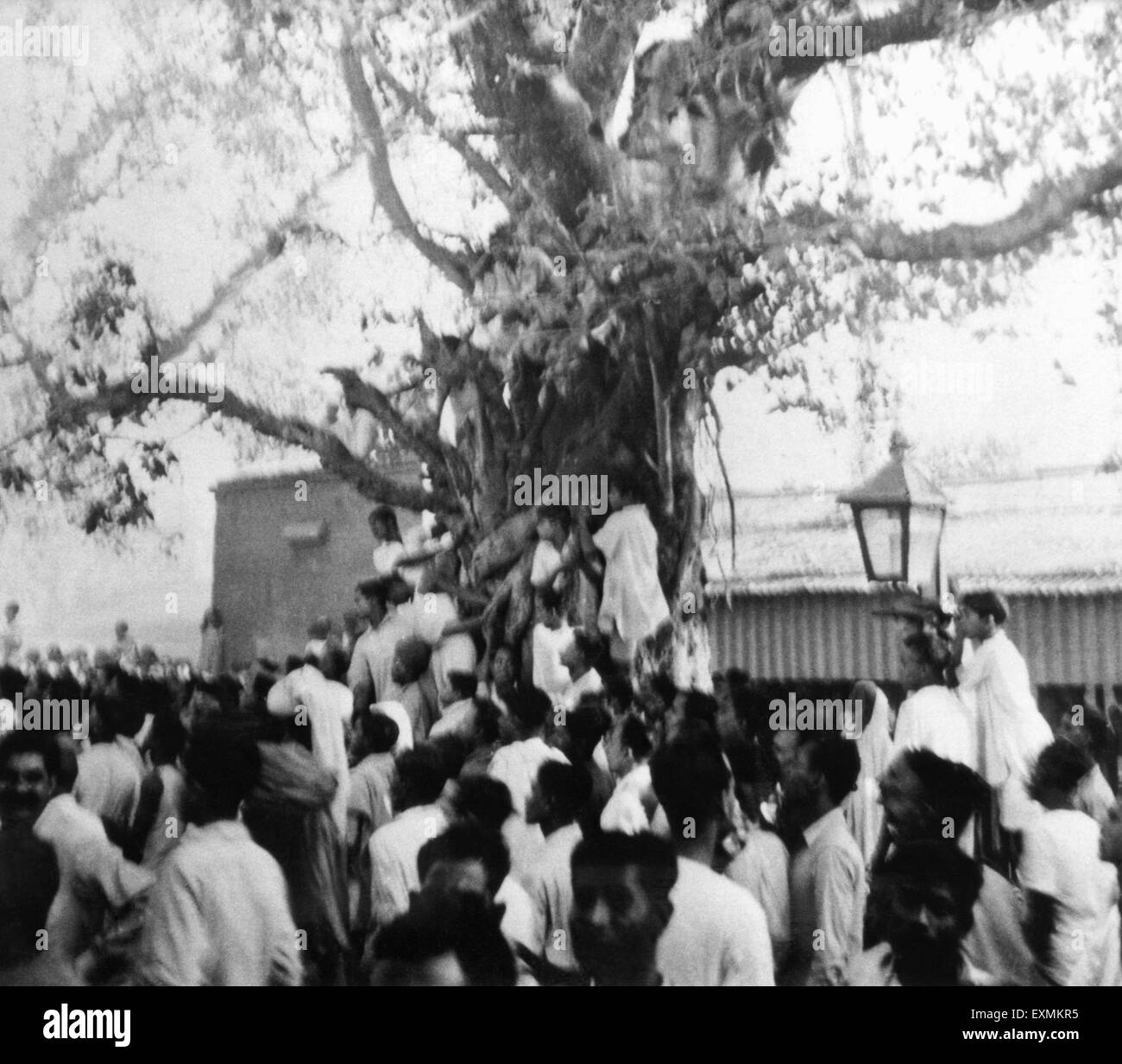 People watching Mahatma Gandhi accompanied by Khan Abdul Gaffar Khan ; leaving a car in Bihar ; 1947 ; India NO - Stock Image