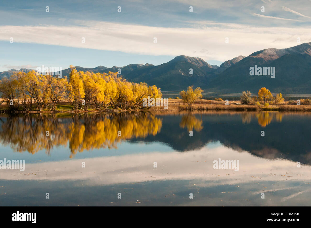 Colorful Cottonwood trees along the Kicking Horse Reservoir ajacent to Highway 93 in Western Montana backed by the - Stock Image