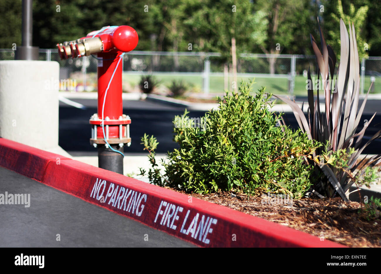 'No Parking Fire Lane' sign on the parking lot, with a fire hydrant on the background. - Stock Image