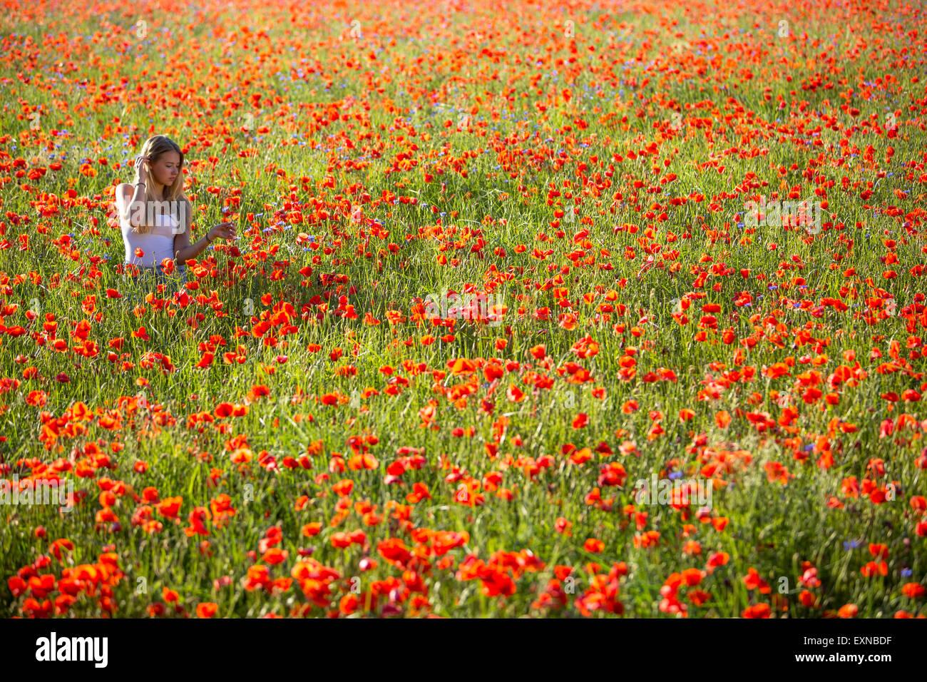 Germany, Bavaria, girl in a poppy field - Stock Image