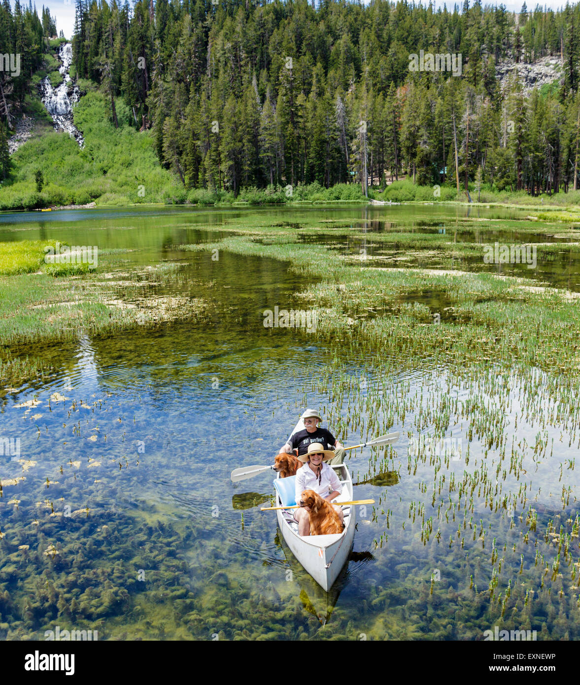 Couple share canoe with dogs in Twin Lakes in Mammoth Lakes Basin in the Eastern Sierra - Stock Image