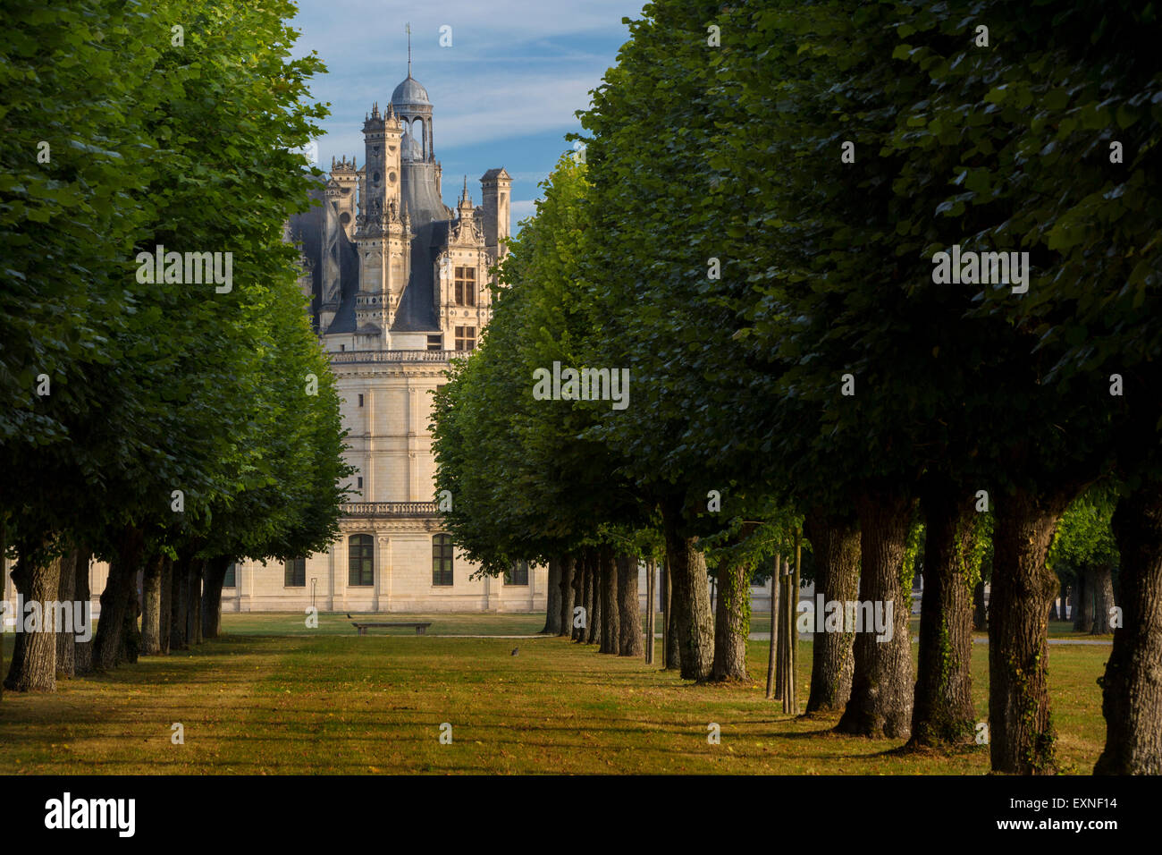 Early morning over Chateau de Chambord - originally built as a hunting lodge for King Francis I, Loire-et-Cher, - Stock Image