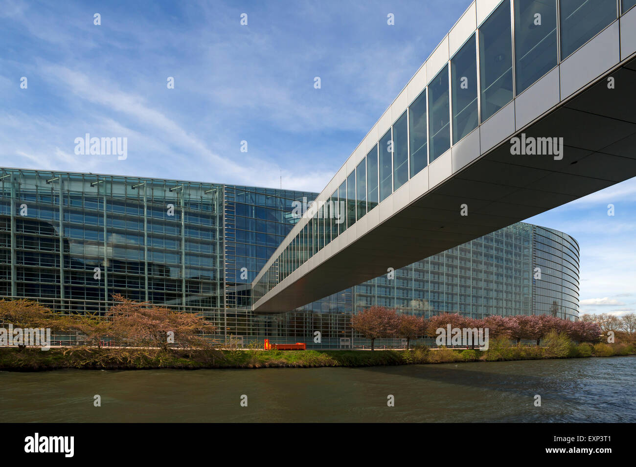 European Parliament with the crossing of the ILL, Eurodistrict, Strasbourg, Alsace, France Stock Photo