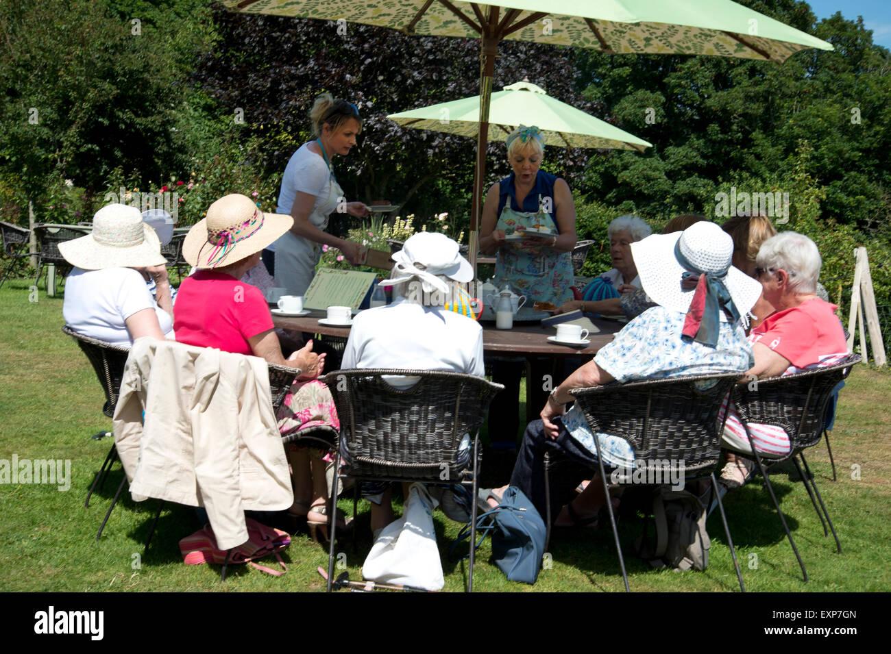 Cornwall 2015. Halwyn's tea garden, Old Kea near Truro - Stock Image