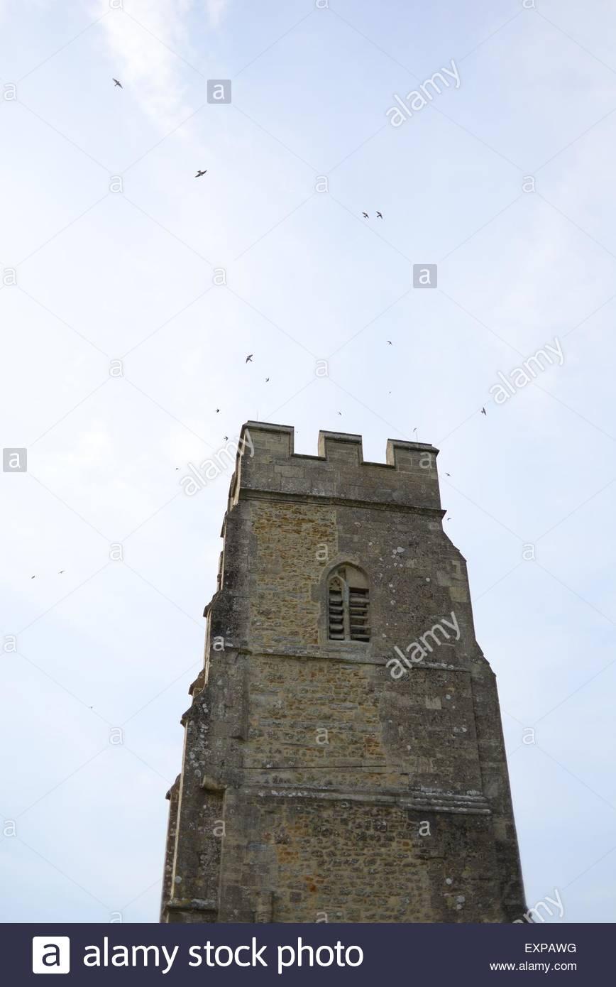 Birds encircle the tower of Glastonbury Tor, Somerset. - Stock Image