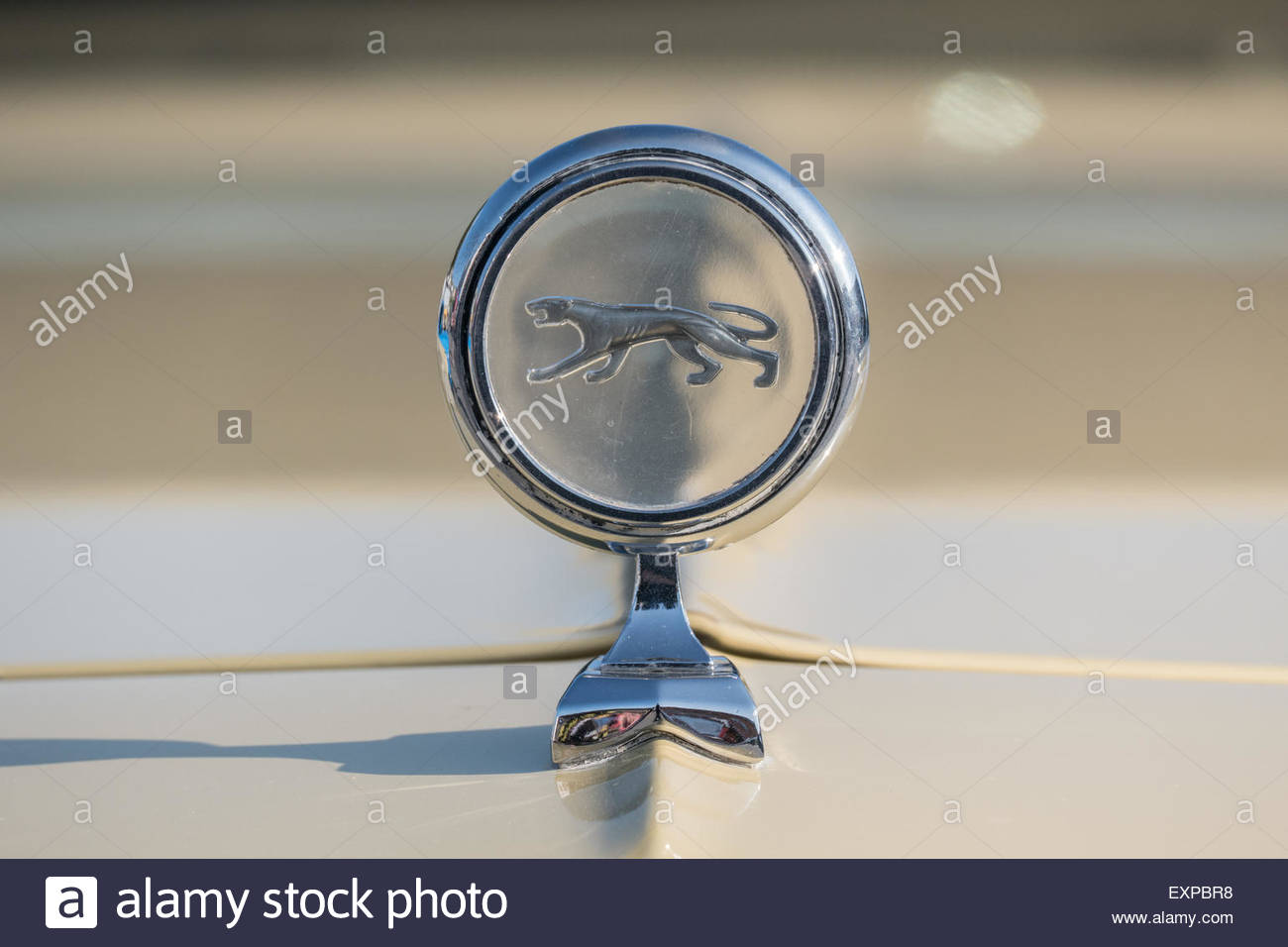Hood Ornament From A Third Generation Mercury Cougar Stock Photo