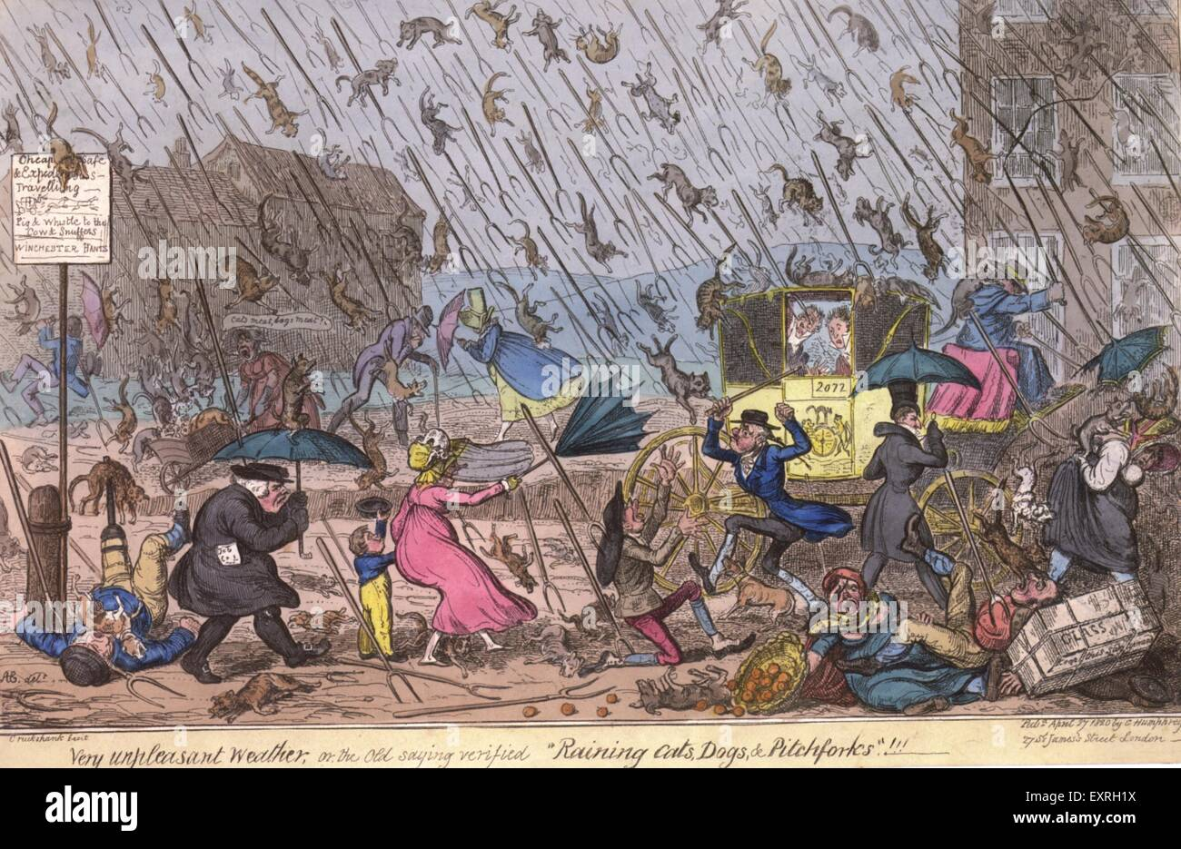 Raining Cats And Dogs High Resolution Stock Photography And Images Alamy