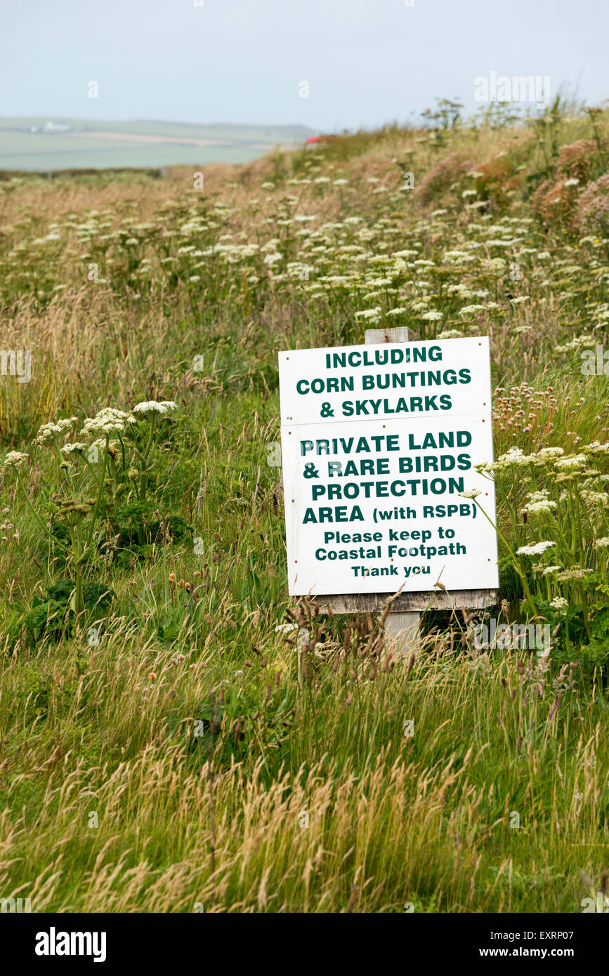 A sign warning of protected land to protect the breeding grounds of skylarks and corn buntings at Portcothan Cornwall - Stock Image