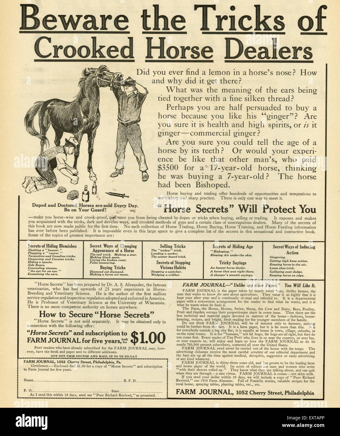 1910s USA Horse Traders Dealers Magazine Advert - Stock Image