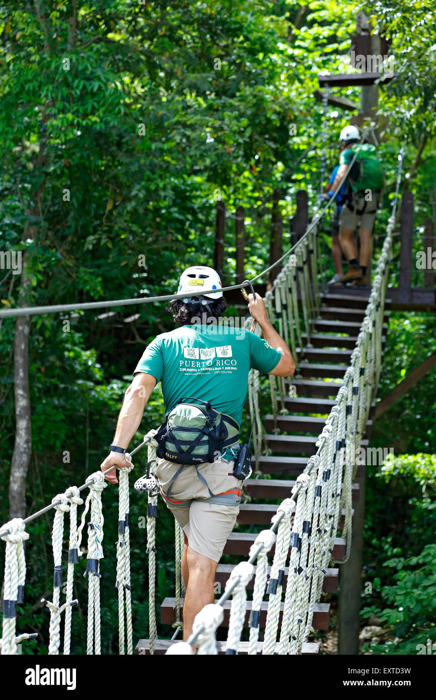 Man crossing suspended canopy bridge, Ecoquest Adventures & Tours, Hacienda Campo Rico, Carolina, Puerto Rico - Stock Image