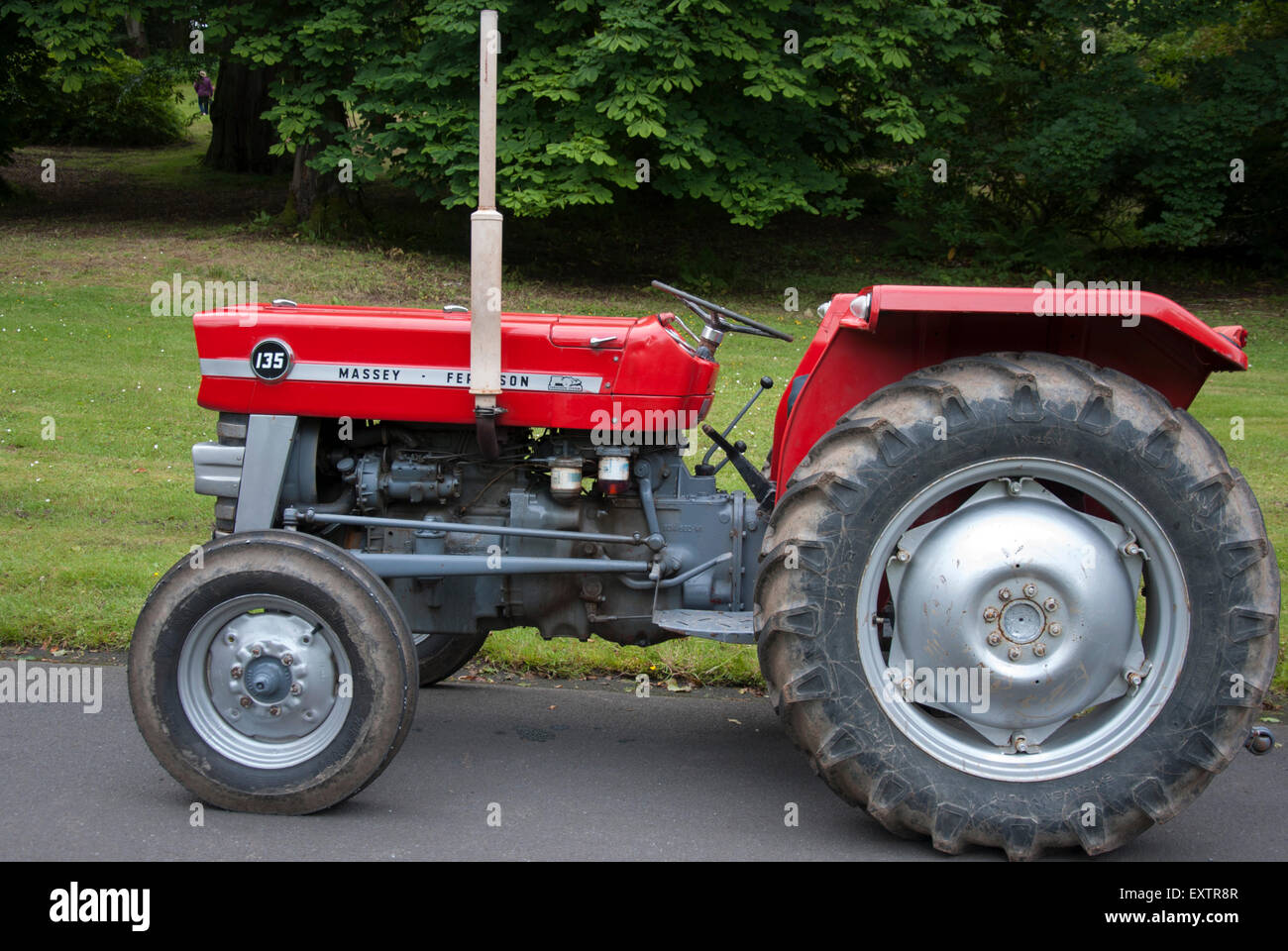 1960 39 s red grey massey ferguson 135 series tractor stock. Black Bedroom Furniture Sets. Home Design Ideas