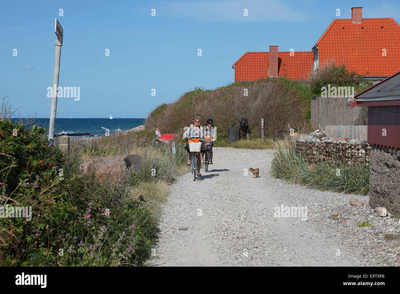 A path along the rough Kattegat coast in Kikhavn, a fishing hamlet with a warm and cosy atmosphere 2 km east of - Stock Image