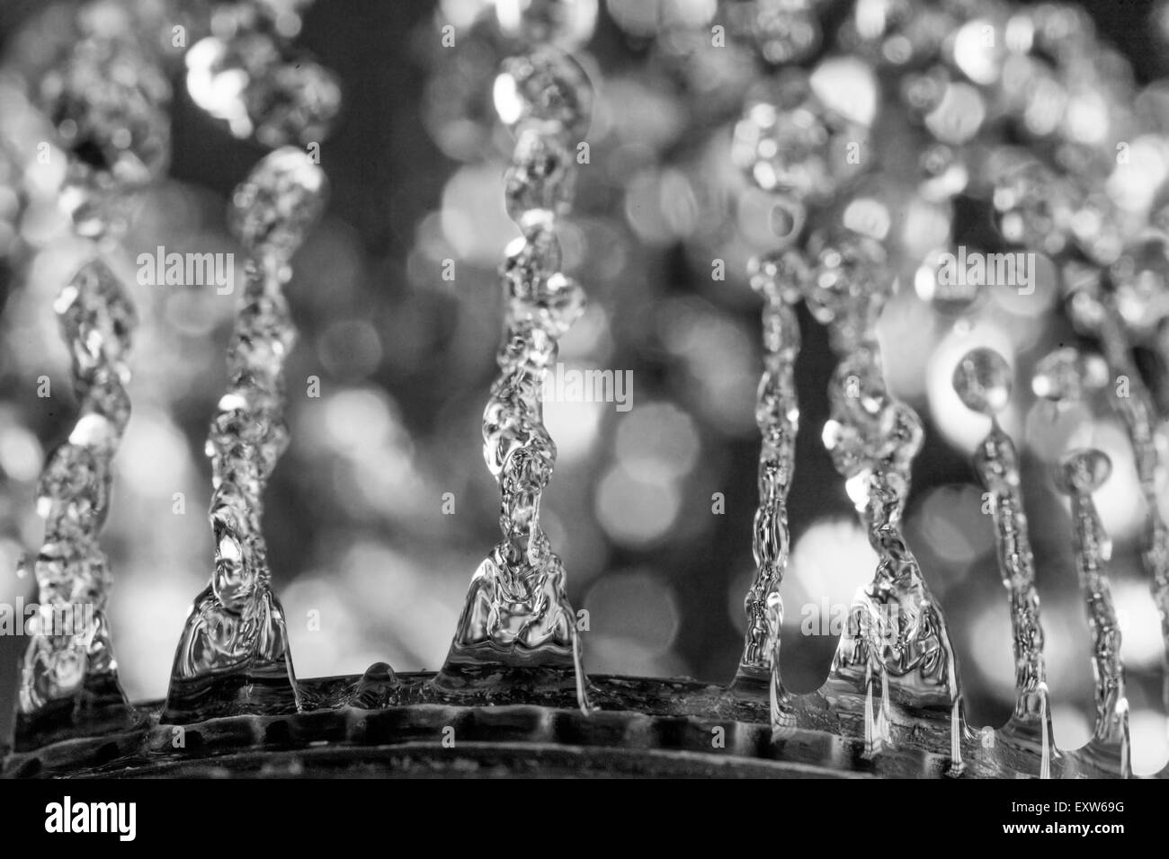 Water drops and blurred background macro shot - Stock Image