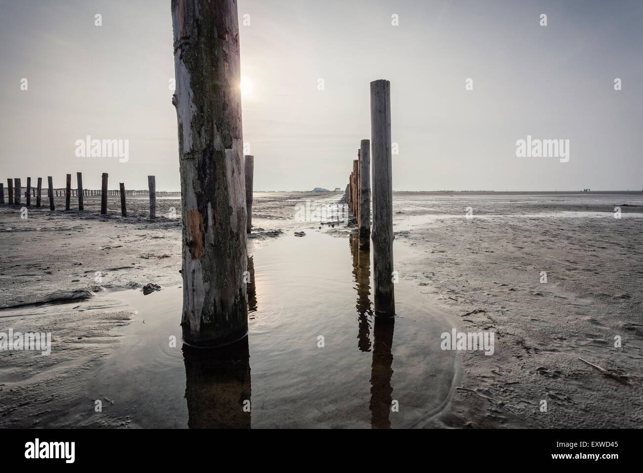 Wooden posts on the beach of Sankt Peter-Ording, Schleswig-Holstein, Germany - Stock Image