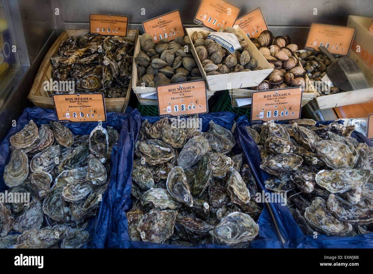 oysters at seafood restaurant le grand cafe de turin nice france stock photo 85385675 alamy. Black Bedroom Furniture Sets. Home Design Ideas
