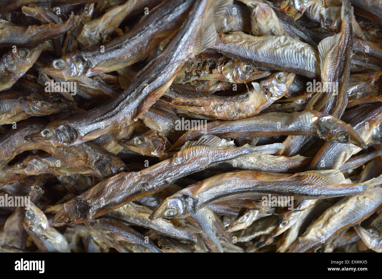 Dried small anchovies fish at the market in Chinatown. Food background texture. - Stock Image