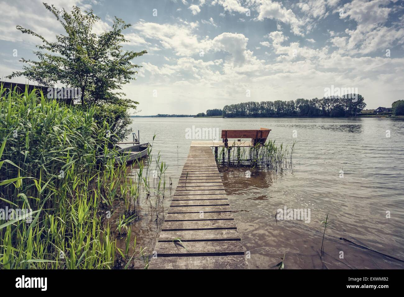 Shore of Passader See, Schleswig-Holstein, Germany - Stock Image