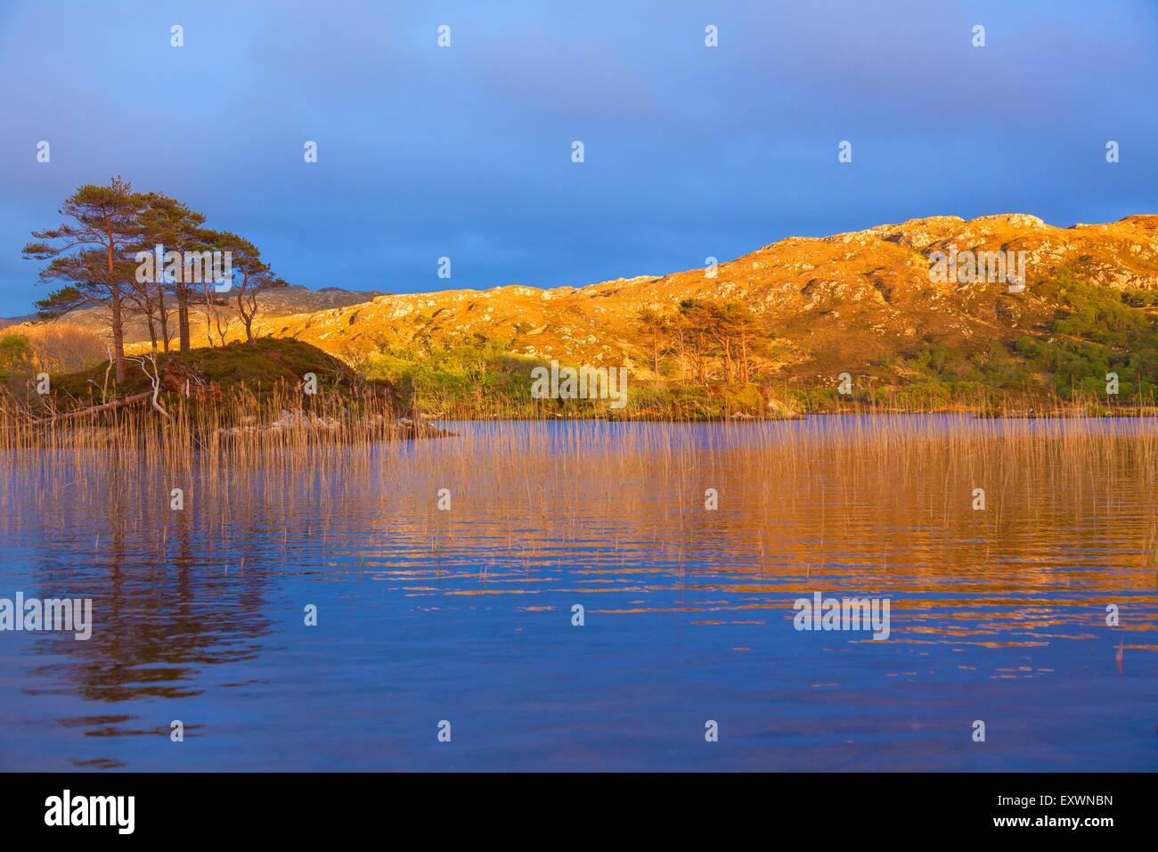Loch Druim Suardalain, Assynt, Scotland, Great Britain, Europe Stock Photo
