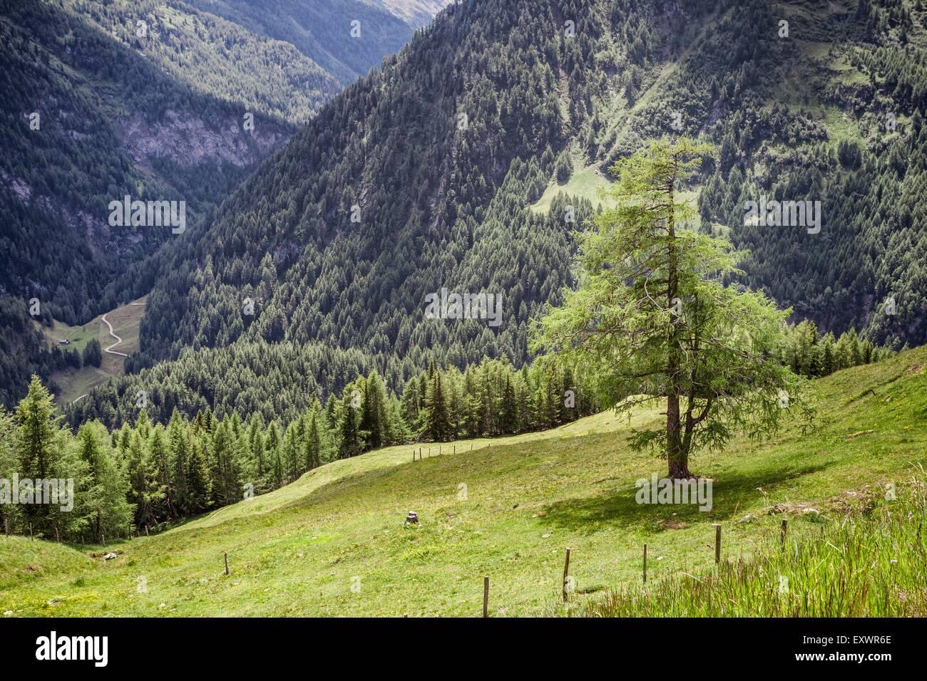 Landscape, Grossglockner High Alpine Road, Austria, Europe - Stock Image