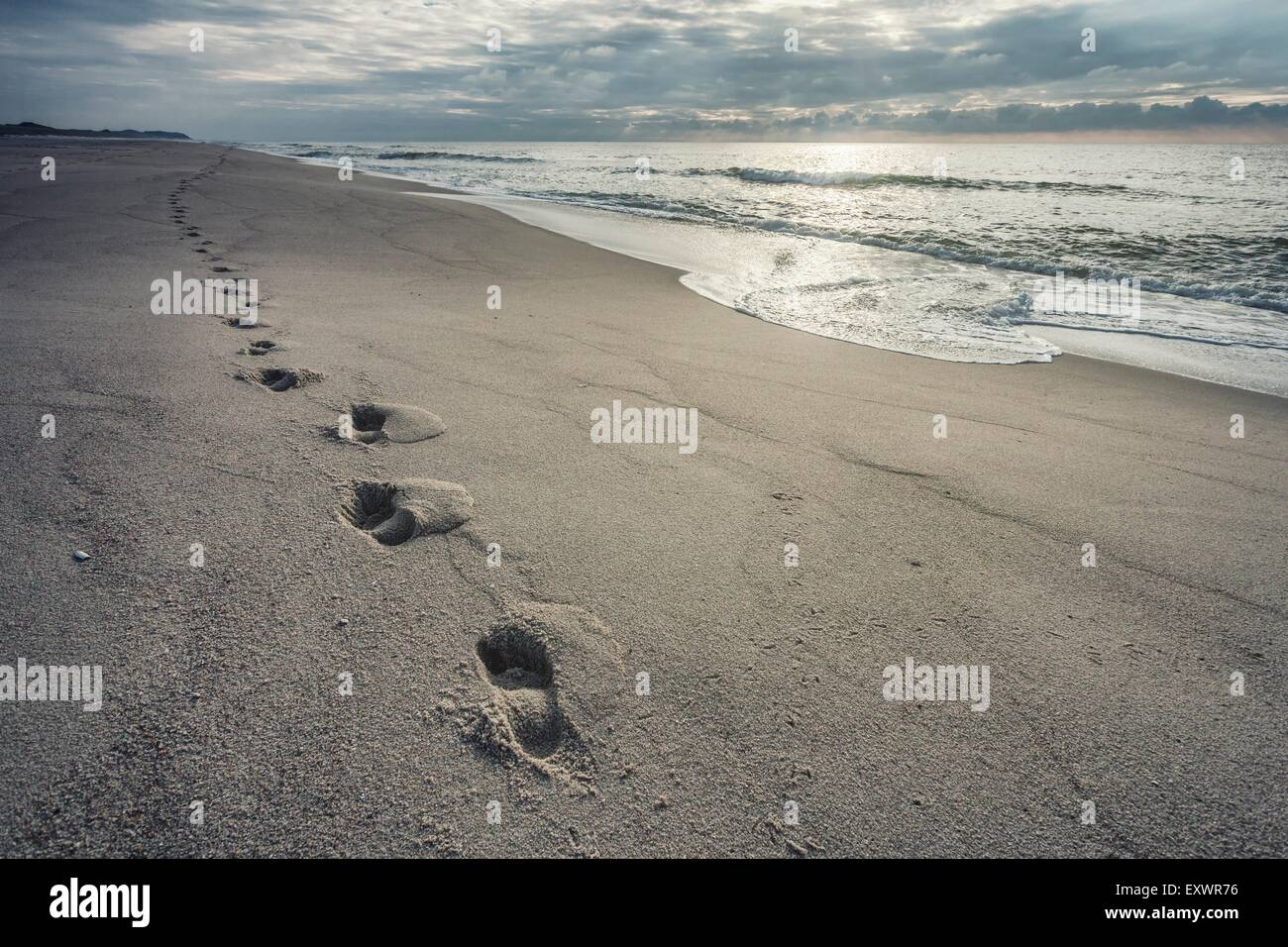 Footprint in sand, Sylt, Schleswig-Holstein, Germany, Europe - Stock Image