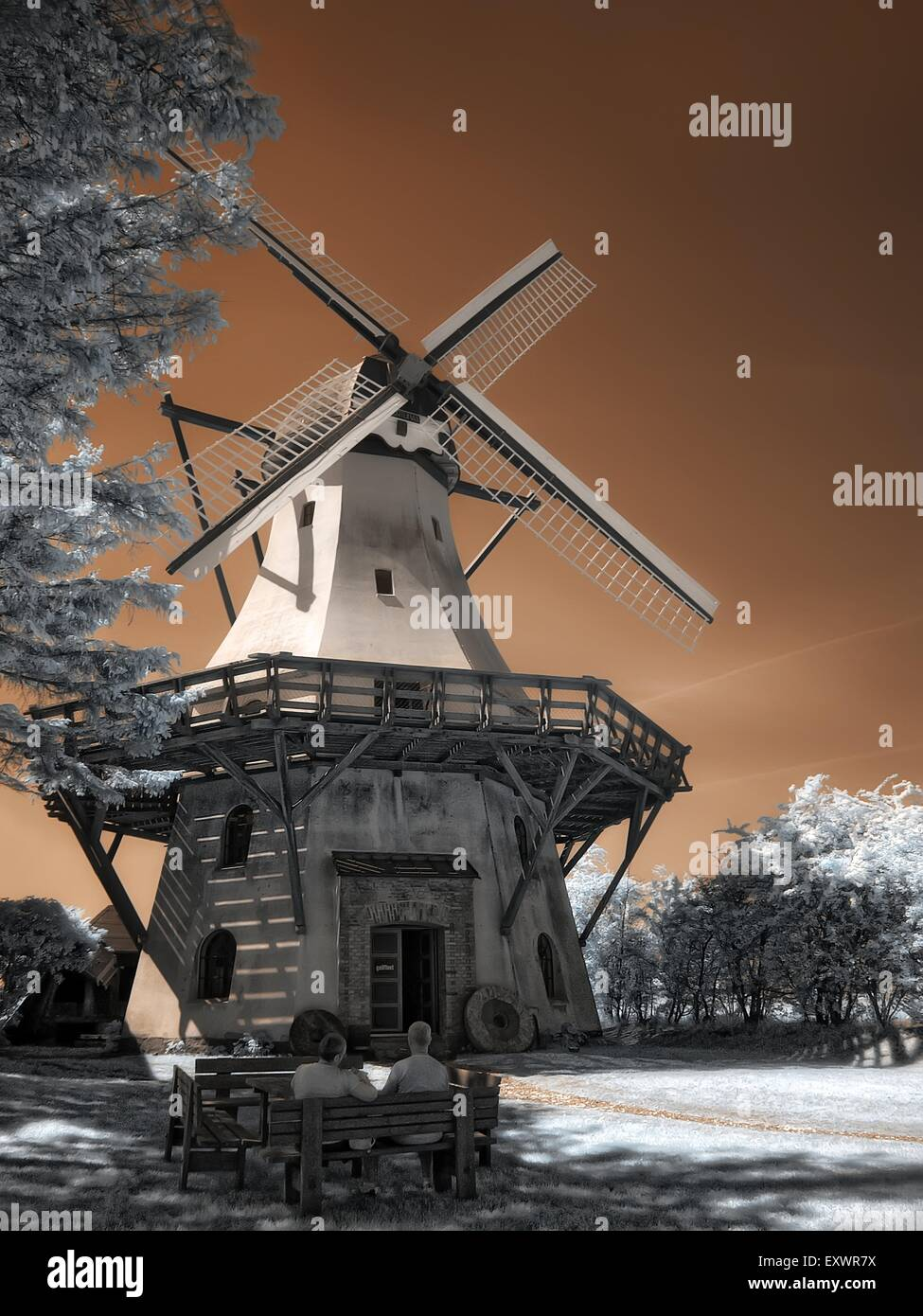 Windmill at open-air museum in Langballig, Schleswig-Holstein, Germany, infrared photography - Stock Image