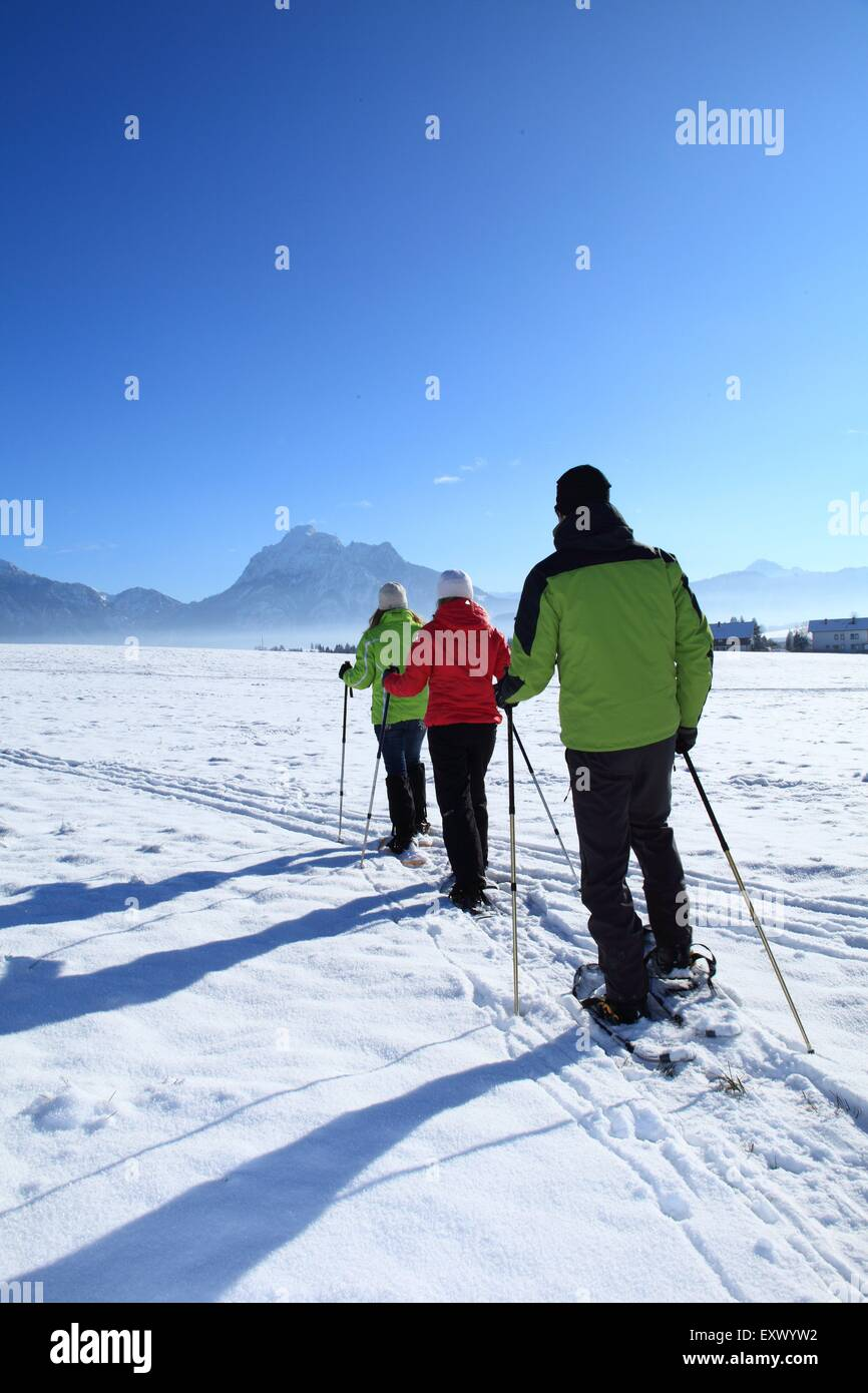 Three persons with snow shoes, Tegelberg, Ammergau Alps, Allgaeu, Bavaria, Germany, Europe - Stock Image