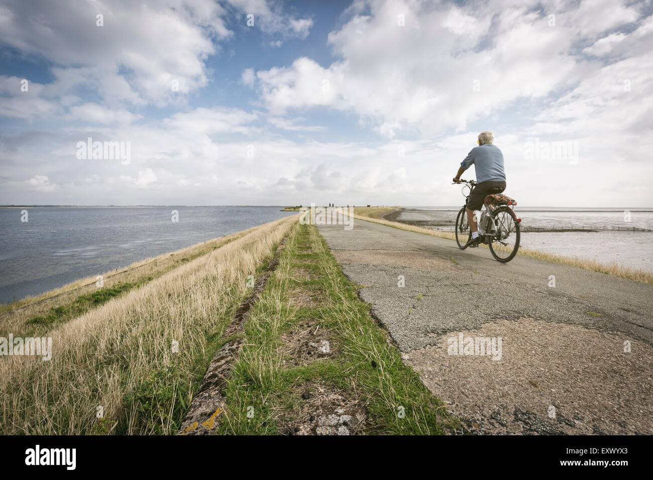 Bicyclist on dyke, Sylt, Schleswig-Holstein, Germany, Europe - Stock Image