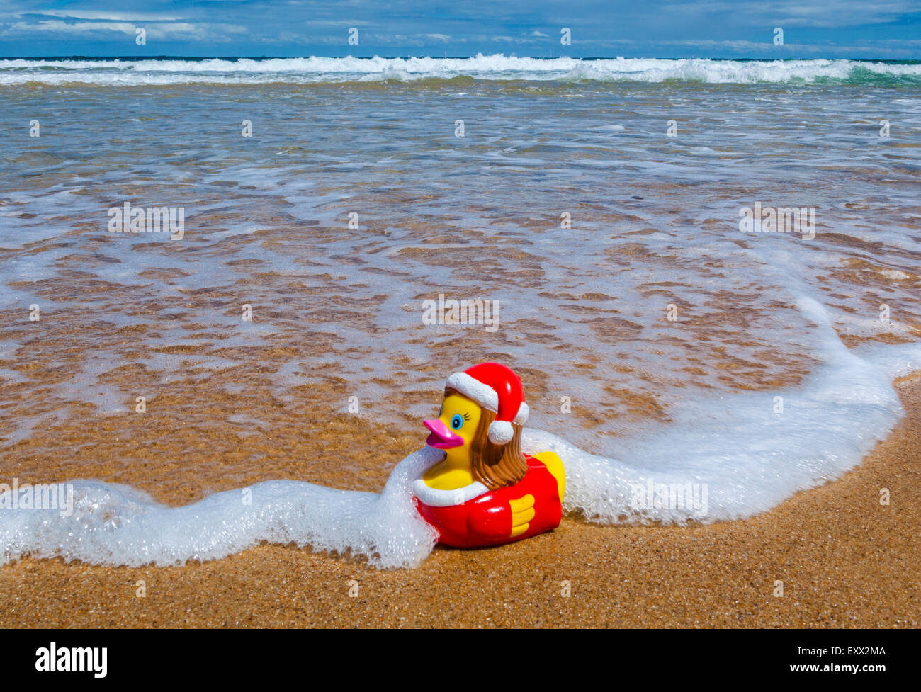 Southern hemisphere summer christmas, xmas rubber duck at Putty Beach, Central Coast, New South Wales, Australia - Stock Image