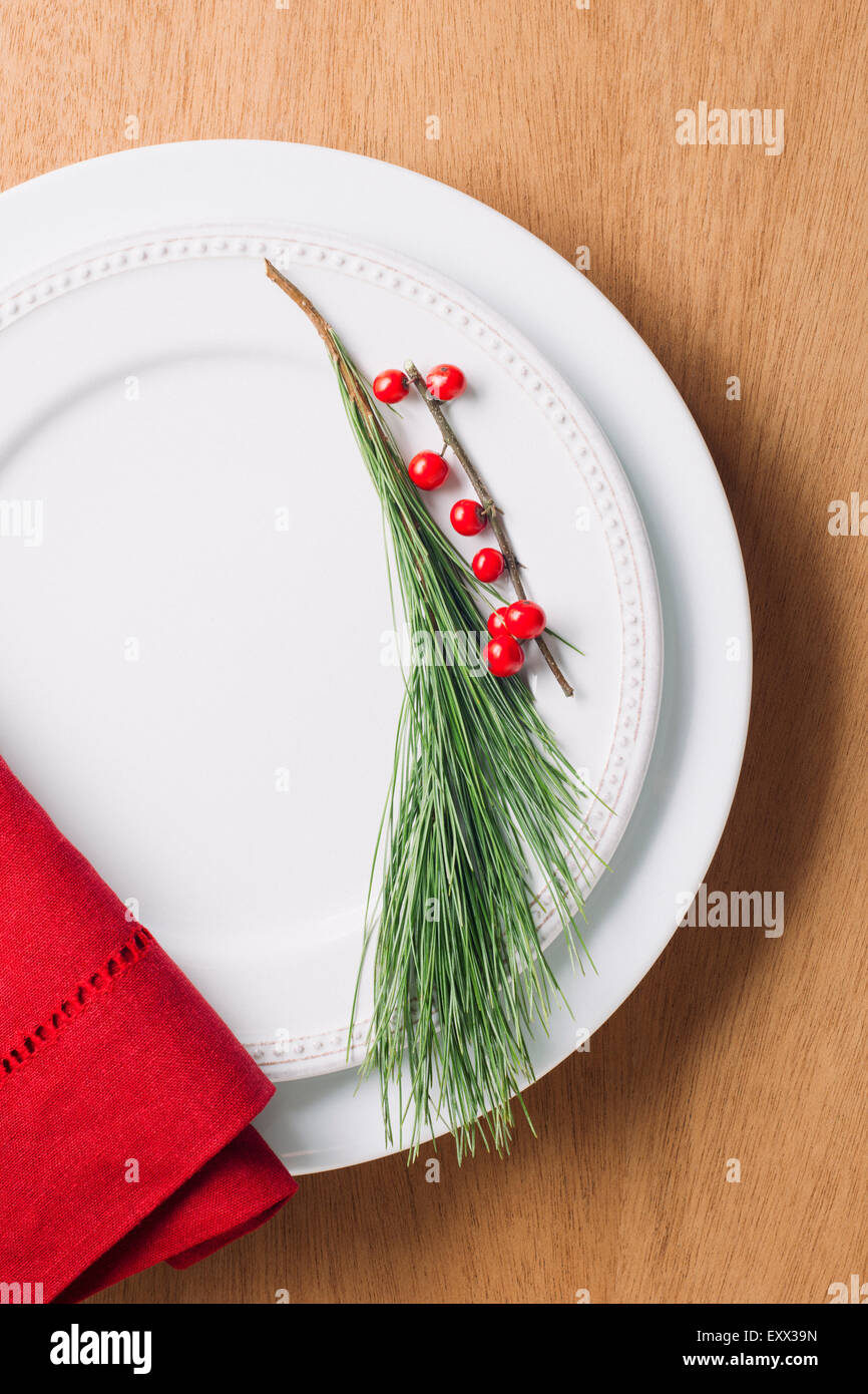 Elevated view of twig on plate - Stock Image