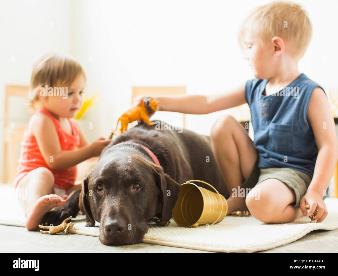 Children (2-3) playing with dog - Stock Image