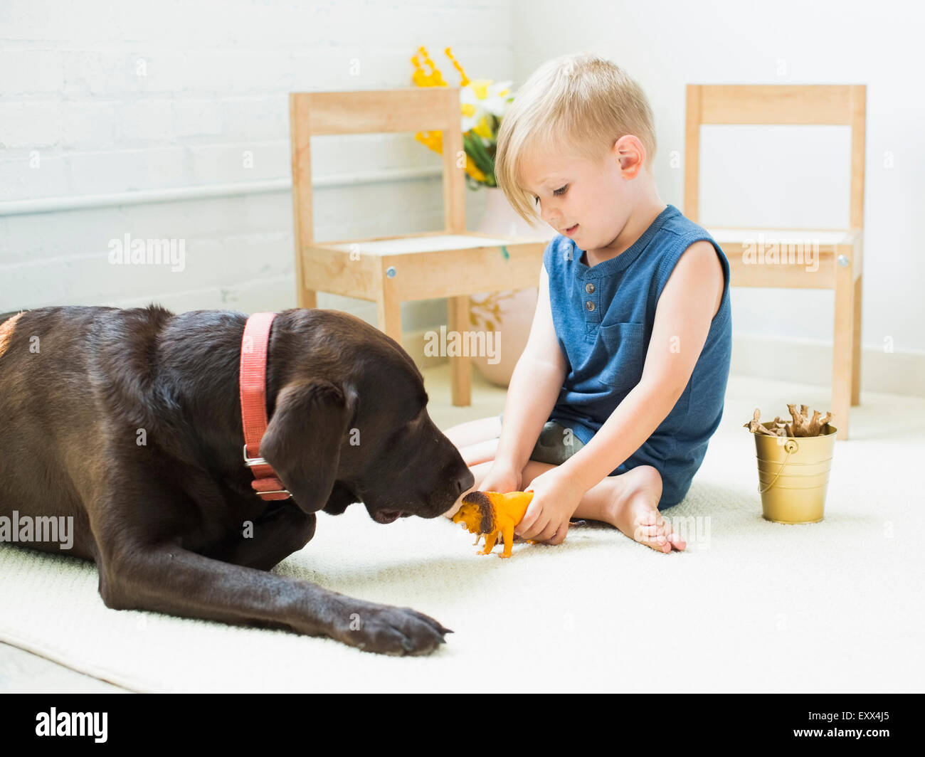 Little boy (2-3) playing with dog - Stock Image
